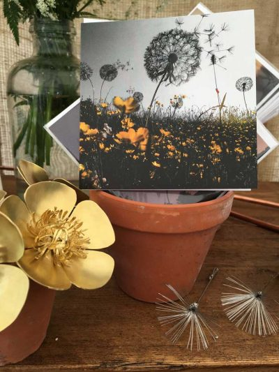 Dandelions Greetings Card