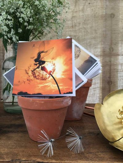Skylark Greetings Card