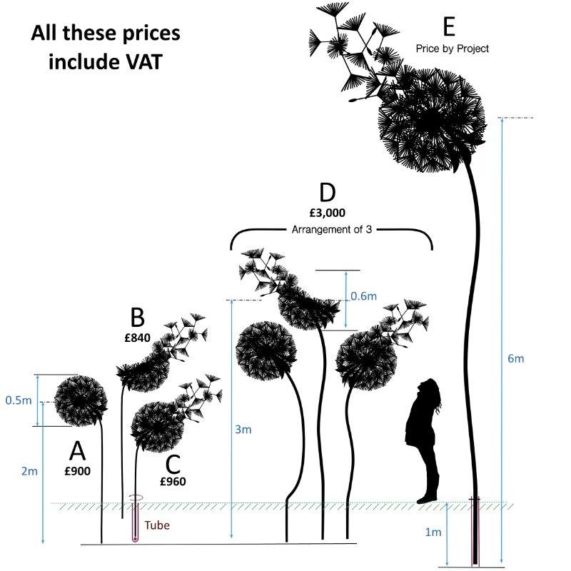 dandelion sizes