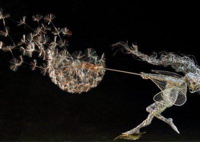Dancing with Dandelions 1